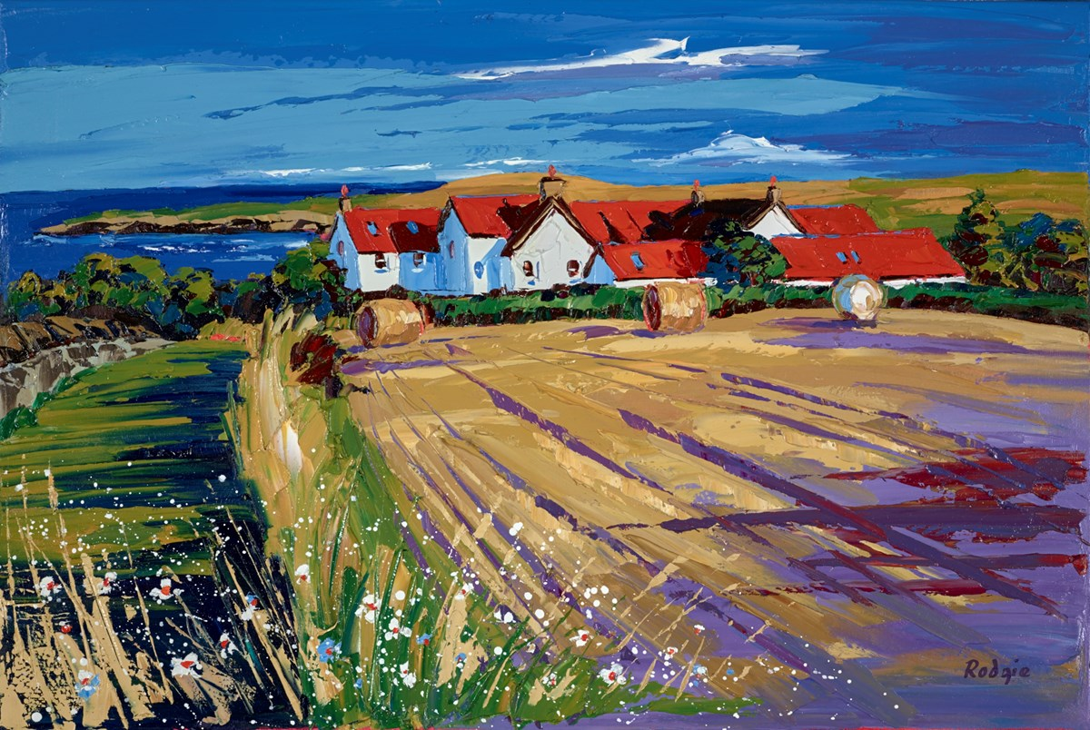 Afternoon Shadows, St Abbs by lynn rodgie -  sized 30x20 inches. Available from Whitewall Galleries
